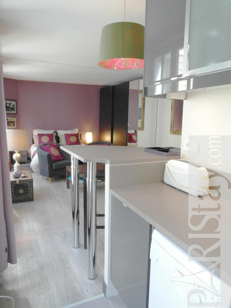 Paris Vacation Apartments  Luxury short term rental